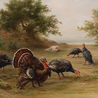 Wild Turkeys, Point Peele, Lake Erie - Frederick Arthur Verner