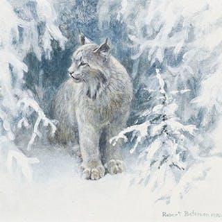 Lynx - Robert Bateman