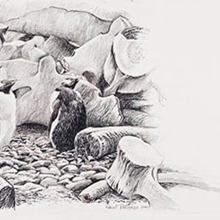 Penguins with Bones - Robert Bateman