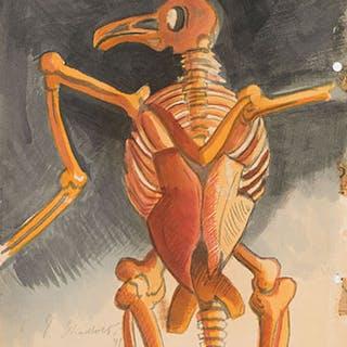 Bird Skeleton - Jack Leonard Shadbolt