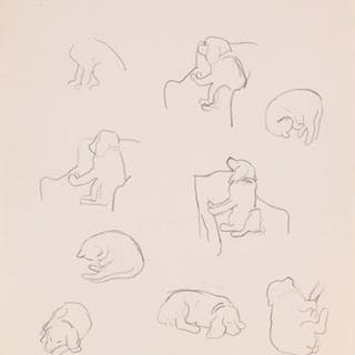 Dog and Cat Studies - William Goodridge Roberts