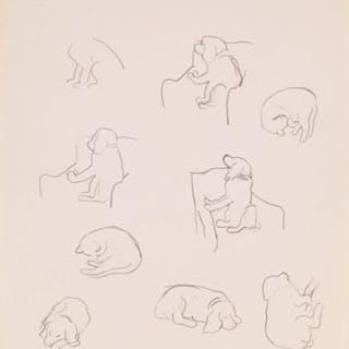 Dog and Cat Studies - William Goodridge Roberts