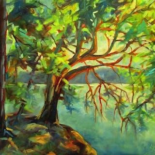 Arbutus Tree  Wallace Island - Linda Yurgensen