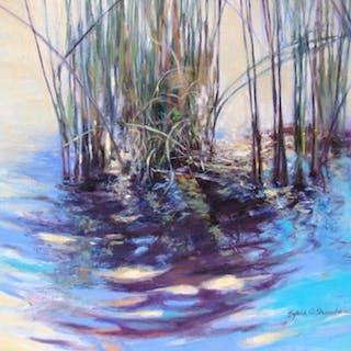 Holy Waters #2 - Sylvia Shanahan