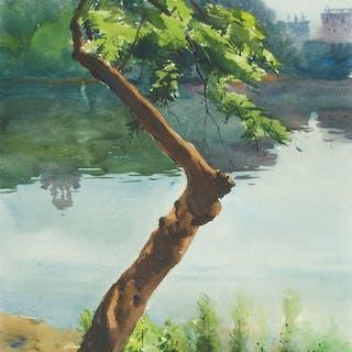 Dhanmondi Lake 04 - Helal Uddin