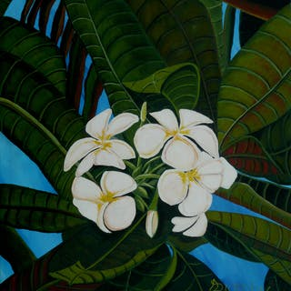 In The Tropics - Anthony Dunphy