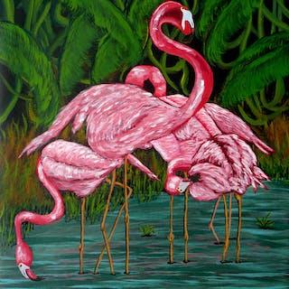 Flamingo - Anthony Dunphy