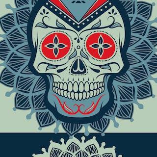 Rubino Rise Skull Reb Blue - Tony Rubino