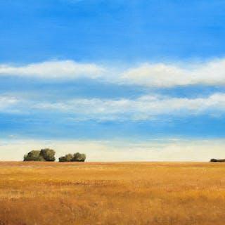 Summer Skies 190726 - Don Bishop