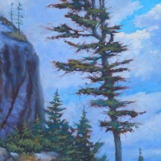 Top Tree on the Rockies - German Mckenzie