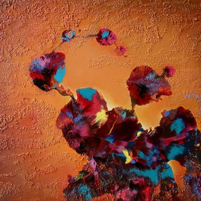 FLOWERS AT SUNSET - Irini Karpikioti