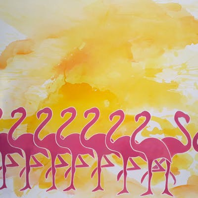 Where are the Flamingos at Flamingo Park - wendy smith