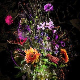 Bouquet XXII - teis albers