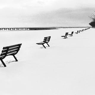Benches In Snow - Norman Lerner