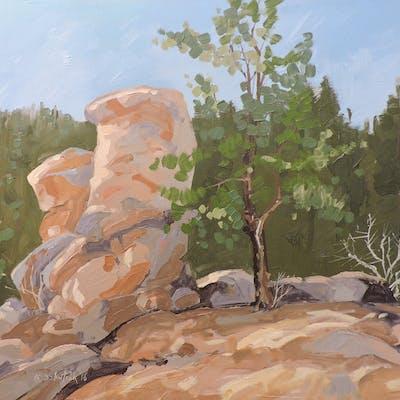 Rocks by S. Platte - Richard Szkutnik