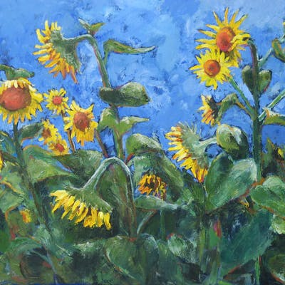 Sunflowers - Stephanie Berry