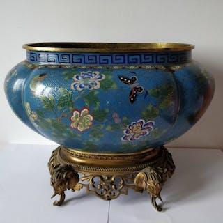 cache pot/jardinière - Émail cloisonné - Chine - Daoguang (1821–1850)