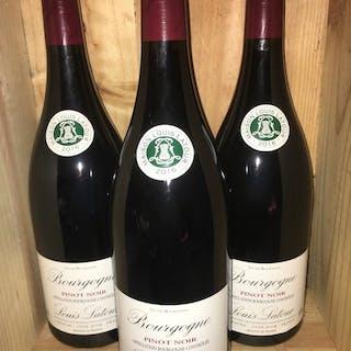 2016 Louis Latour Pinot Noir - Bourgogne - 3 Magnumflasche (1,5 L)