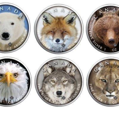 Kanada - 5 Dollars 2019 'Wildlife - Eisbär