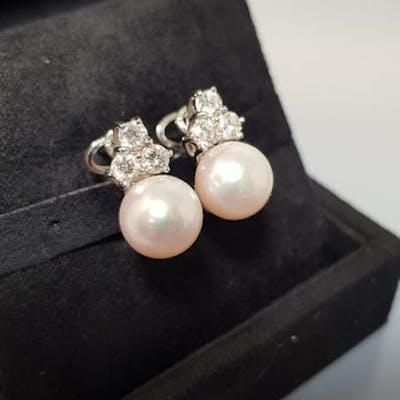 18 carati Oro bianco - Orecchini Perle - Diamanti
