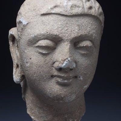 Tête - Stuc - Bouddha - Afghanistan - 4th-5th century Gandhara period