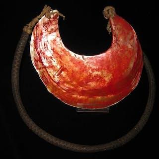 Halskette (1) - Muschel - Kina - New Guinea Highlands, Papua-Neuguinea