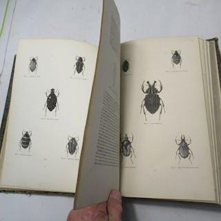 Dr. Chenu  - Encyclopédie d'Histoire Naturelle ou Traité...