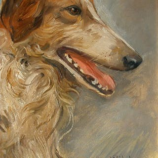 Carl Plückebaum (1880-1952)- Hunde Porträt, Langhaar-Collie