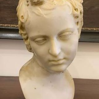 Bust in marble paste of the late twentieth century in neoclassical style