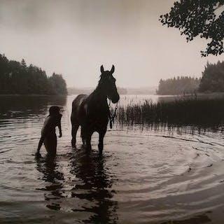 Bruno Alsins (1932-)- Let's bathe the wonderful horses, 1985