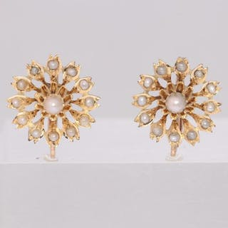 18 kt. Gold - Earrings
