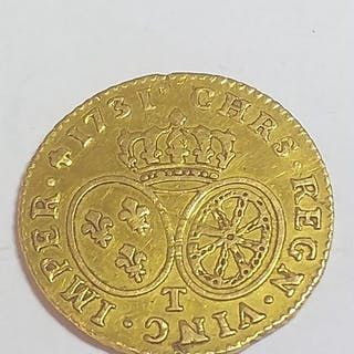 France - Louis d'or Louis XV 1731 -T (Nantes)- Gold
