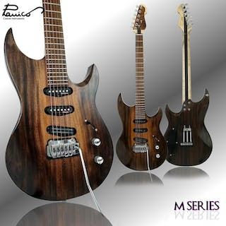 Panico Custom Instruments - M Series MT545T - electric guitar - Italy - 2019