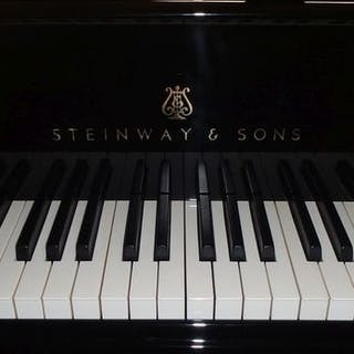 Steinway & Sons - c - Piano (pianoforte) - Germany - 1896