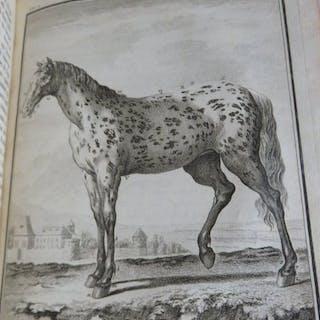 Daubenton -Histoire Naturelle
