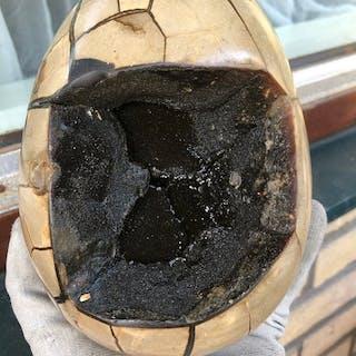 Large polishedwild septarium geode egg - 18×12×48.3 cm - 3300 g