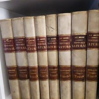 Brehm - La Creación. Historia Natural - 1880