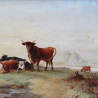 Europese School - Weide met Koeien