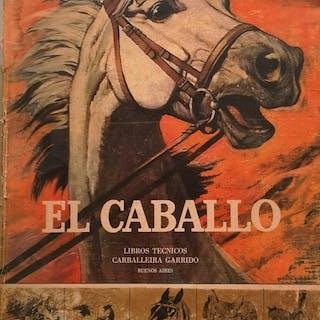 Bruno y BeatrizPremiani - El Caballo - 1975