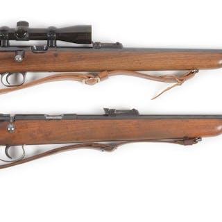 Both rifles are caliber .22 LR