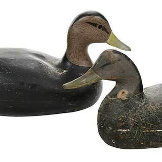 Two Black Duck Decoys, Including Doug Jester