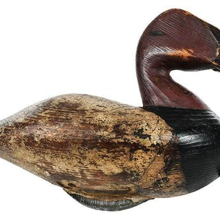 Canvasback Drake Decoy