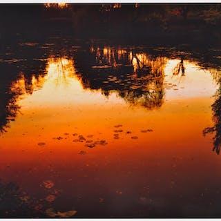 Nocturne à Giverny, 2010 - Elger Esser