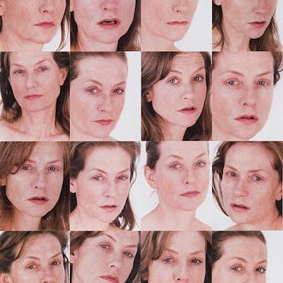 Portrait of an Image, 2013 - Roni Horn