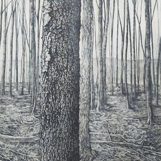 Woodlot III by Jo Manning