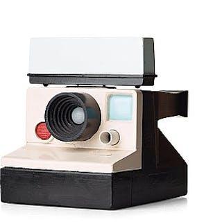 "Dan Wolgers, ""Polaroidkamera i dubbel skala""."