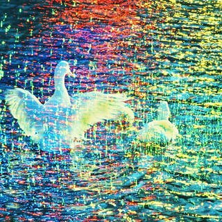 "Mitchell Funk, White Ducks "" Photo-Impressionism"" (1970)"