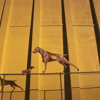 Robert Funk, Dogs on a Fence (1978)