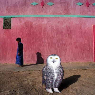 Robert Funk, The Owl of Goulimine (1977)