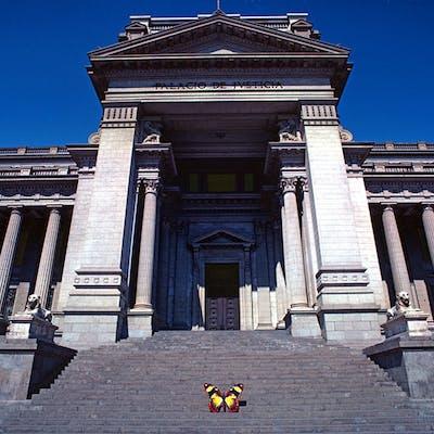 Robert Funk, Butterfly lands at El Palacio de Justicia (1977)